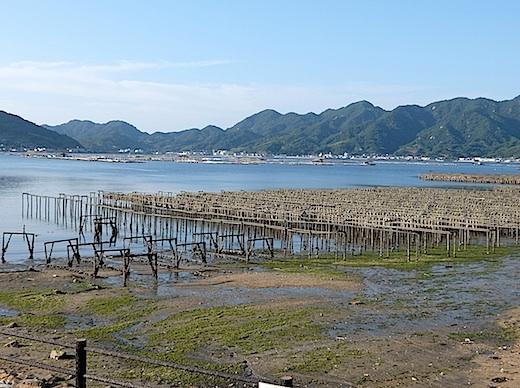 21江田島牡蠣養殖2.jpg